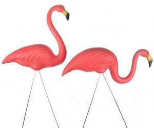Pink_Flamingos_ProductShot
