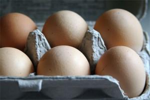 cs_eggs