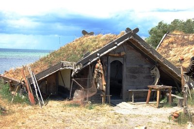 3small11_Viking_house1