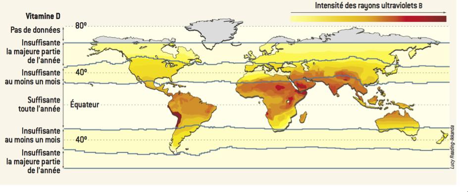 Carte du monde de l'intensité des UVB : la France est située à une latitude où l'intensité des UVB est insuffisante la majeure partie de l'année pour la synthèse de vitamine D par notre peau (Tavera-Mendoza 2008)1