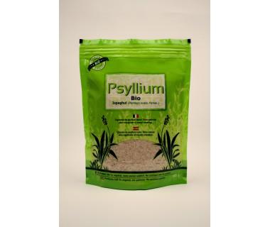 psyllium-blond-sachet-de-300g