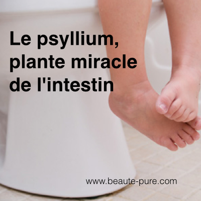 psyllium.001