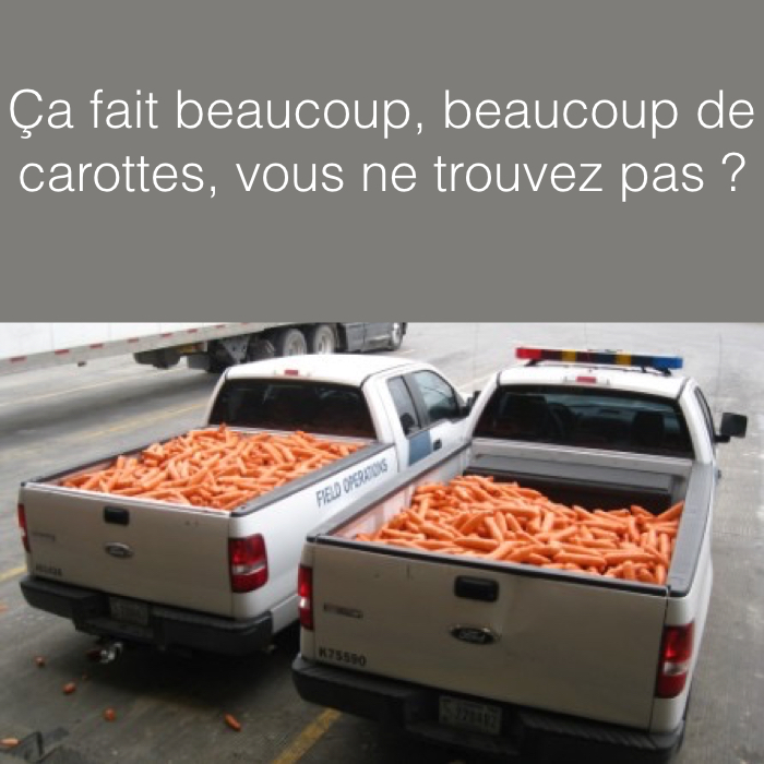 CAROTTES TRUCK.001