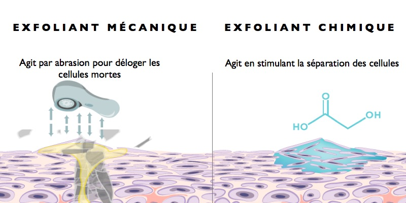 types exfoliants.001